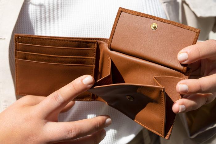 Produktbild Brieftasche ERDE Innenansicht