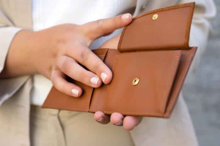 Produktbild Brieftasche ERDE mit Münzfach
